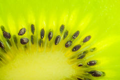 Fresh kiwi slice closeup Royalty Free Stock Image