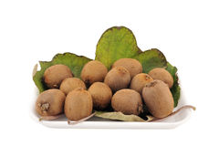 Fresh kiwis isolated on a white background. Ripe and juicy kiwi fruit on a white background stock photography