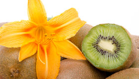 Fresh kiwis and a orange lily Royalty Free Stock Image