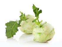 Fresh kohlrabi Stock Images