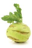 Fresh kohlrabi cabbage Stock Photos