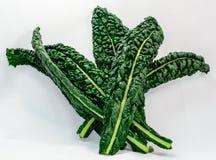 Fresh Lacinato Kale Leaves. Fresh Raw Lacinato Kale isolated on a white background Stock Photos