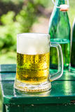 Fresh lager beer in garden Stock Image