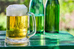 Fresh lager beer in sunny day Royalty Free Stock Photo
