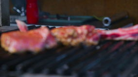 Fresh lamb chops, grilled over charcoal.Meat is cooked on the grill.The process of cooking lamb on fire. stock video