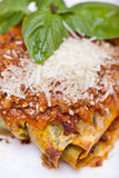 Fresh lasagna Royalty Free Stock Photography