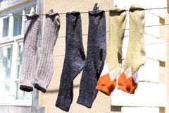 Fresh laundry socks hanging on a clothesline Royalty Free Stock Photo