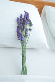 Lavender on pillow. Fresh lavender on bed pillow in bedroom interior Stock Photos
