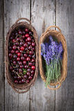 Fresh Lavender and cherries Stock Photography