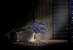 Fresh Lavender in Dark Room Royalty Free Stock Photos