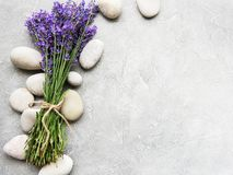 Fresh lavender flowers. And massage stones on a concrete background royalty free stock photography