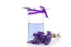 Fresh lavender lemonade. Royalty Free Stock Photography