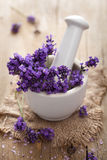 Fresh lavender in mortar Stock Photography