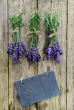 Fresh Lavender, slate Royalty Free Stock Photo