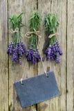 Fresh Lavender, slate Royalty Free Stock Photo