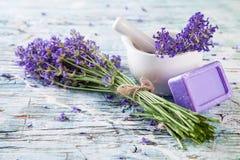 Fresh lavender on wood Stock Photos