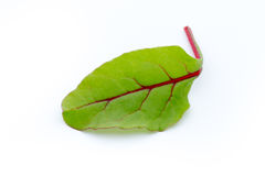 Fresh leaf beet root isolated on white background. Stock Photography