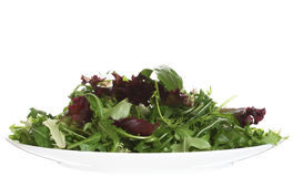 Fresh leaf salad on white plate isolated Stock Photography