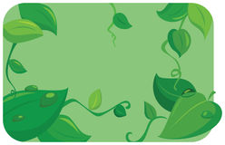 Fresh leafs. Fresh leaf summer vector illustration Stock Images