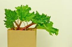 Fresh leafy rhubarb Royalty Free Stock Photos