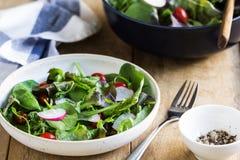 Fresh leafy salad Royalty Free Stock Photography