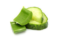 Fresh leaves of aloe Vera and slices of cucumber. Royalty Free Stock Photo