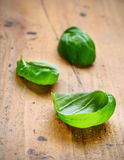 Fresh leaves of basil. With water droplets on rustic wooden boards Stock Photos