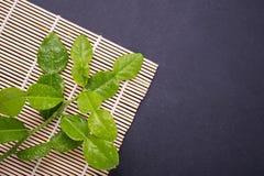 Fresh leaves of Bergamot tree or kaffir lime leaves on black sto. Ne table background. Top view stock photos