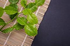 Fresh leaves of Bergamot tree or kaffir lime leaves on black sto. Ne table background. Top view royalty free stock photo