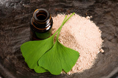 Fresh leaves ginko biloba essential oil and powder Royalty Free Stock Photos