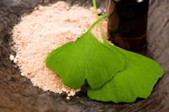 Fresh leaves ginko biloba essential oil and powder Royalty Free Stock Images