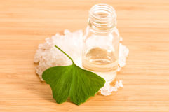 Fresh leaves ginko biloba essential oil and salt Stock Photo