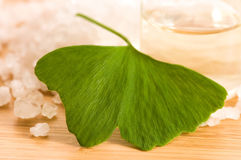 Fresh leaves ginko biloba essential oil and salt Stock Photography