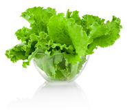 Fresh leaves green Lettuce in transparent bowl isolated on white Stock Images