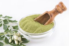 Fresh leaves and moringa powder - Moringa oleifera Stock Images