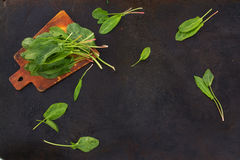 Fresh leaves of sorrel on cutting board on a dark background. Fresh leaves of sorrel on cutting board on a dark metallic background. blackout photo stock images