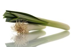 Fresh leek Stock Photography