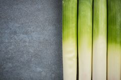 Fresh leek  vegetable, copy space.  Royalty Free Stock Photography