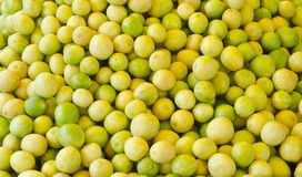Fresh lemon. Bunch of fresh yellow and green lemon Royalty Free Stock Images