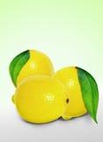 Fresh lemon. Bio fresh lemon, food and fruits Royalty Free Stock Photography