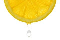 Free Fresh Lemon Royalty Free Stock Photos - 38644208
