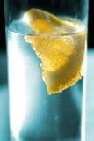 Fresh Lemon Stock Images
