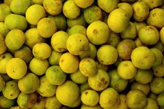 Fresh lemon background Stock Image