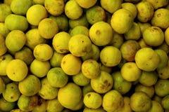 Fresh lemon background Stock Image