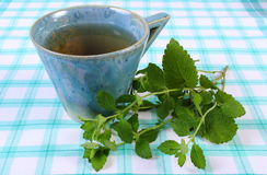 Fresh lemon balm and cup of herbal drink on tablecloth Stock Photography