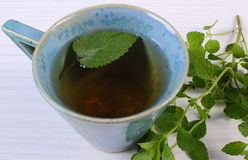 Fresh lemon balm and cup of herbal drink on white wooden table Stock Image