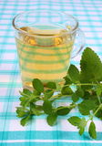Fresh lemon balm and glass of herbal drink on tablecloth Royalty Free Stock Images