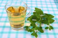 Fresh lemon balm and glass of herbal drink on tablecloth Stock Photos