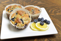 Fresh lemon blueberry muffins on white plate. Royalty Free Stock Image