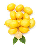 Fresh lemon bunch Stock Photos